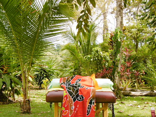 Photo of the massage table in green rainforest.