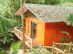 Holidaybungalow in the rainforest on the Pacific coast