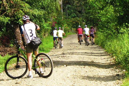Photo with people on a bicycle tour on a wide path through the forest